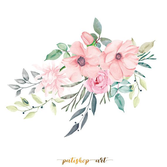 Blush Pink Watercolor Flowers Clipart Separate Elements Rose Peony
