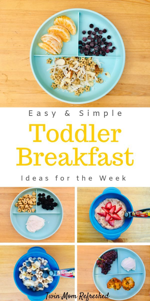 Simple and Easy Toddler or Kid Breakfast Ideas for the ...