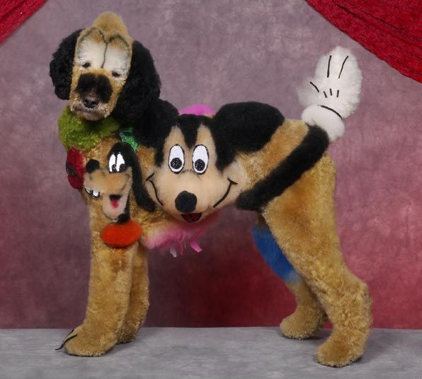 Crazy Dog Grooming Competition Dog Costumes Funny Dog Grooming Shaved Animals
