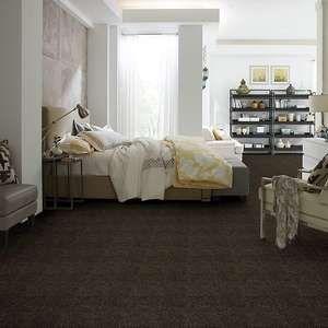 52n89 Essay Ii 15 Residential Carpet Shaw Carpet Colors Shaw Floors Carpet Shaw Floors