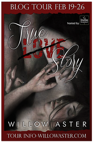 The Indie Bookshelf True Love Story By Willow Aster Review And Blog Tour