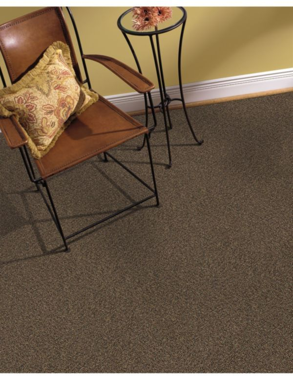 Pin By Dolphin Carpet Tile On Carpet Inspiration Pinterest