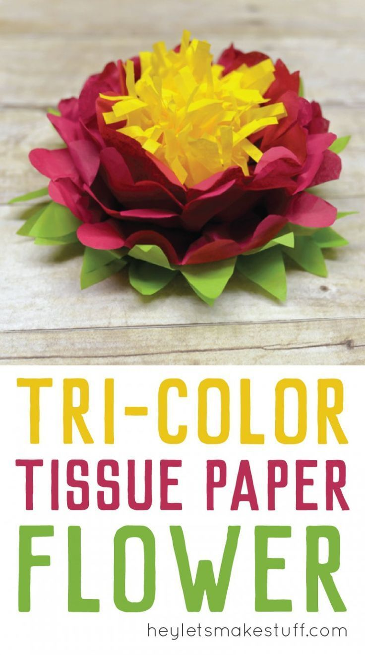Tri Color Tissue Paper Flowers Pinterest Tissue Paper Tissue