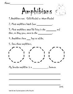 reptiles and amphibians worksheets science animal groupings pinterest amphibians. Black Bedroom Furniture Sets. Home Design Ideas