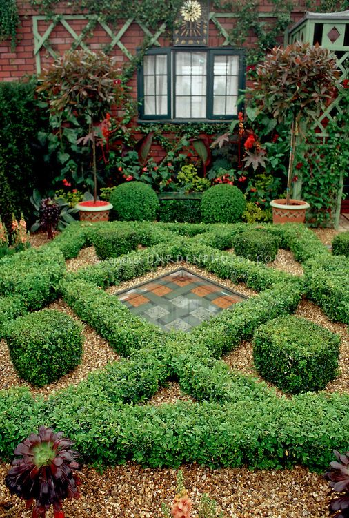 Courtyard Garden With Knot Box Maze, Pebble Mulch, Trees