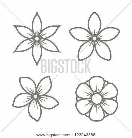 Inner Decal For Leaf Tattoos Accessories Pinterest Jasmine