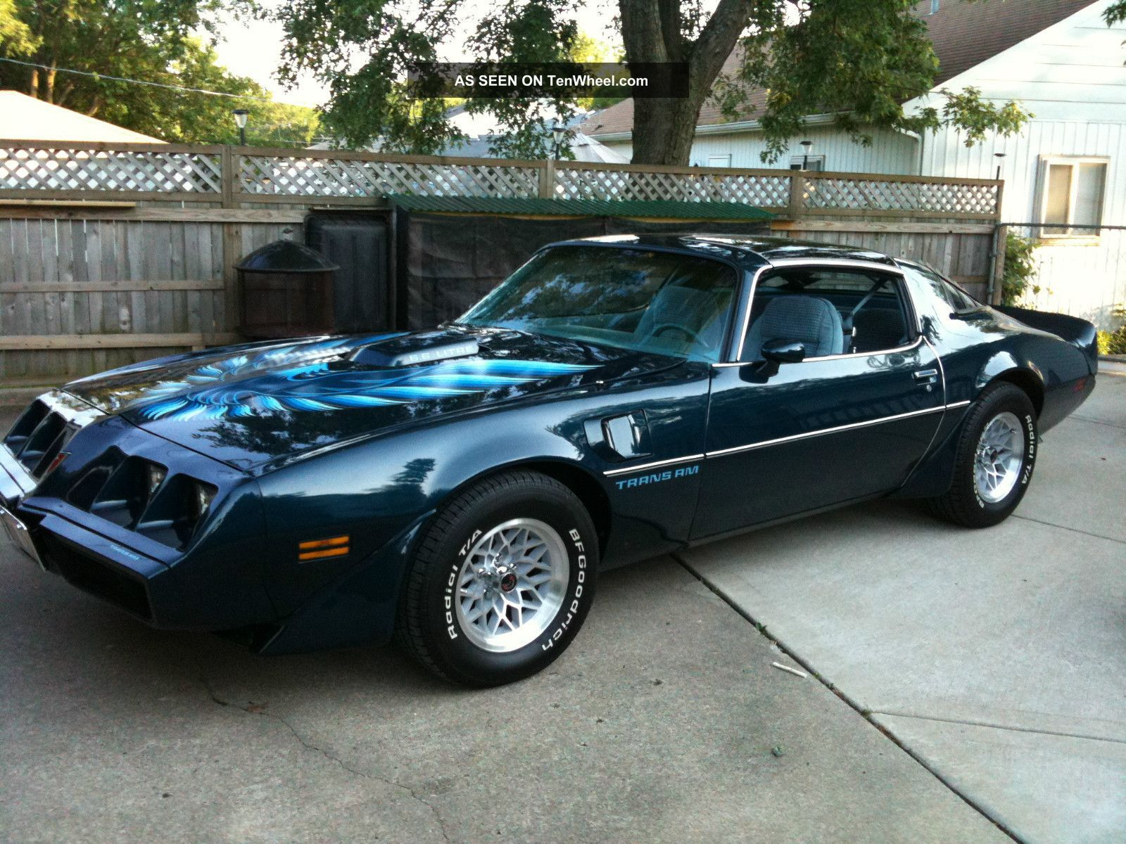 1979 Trans Am Picture 1979 Pontiac Turbo Trans Am Long Lives The Eagle Firebird