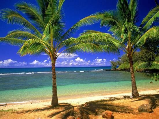 Carte virtuelle Lagon Tropical http://bit.ly/1mPhmHu #CartePostale #Wallpaper