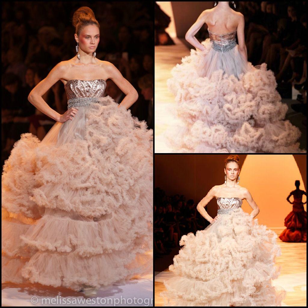 Gorgeous dress! taylor swift runway | Wonderstruck Gown Christian ...
