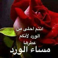 مساء الورد أحبتي Evening Quotes Good Morning Messages Morning Messages