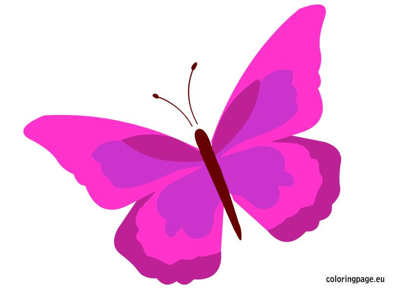 Butterflies Archives Coloring Page Butterfly Coloring Page Coloring Pages Colorful Butterflies