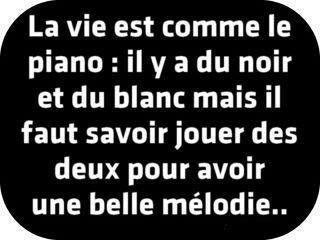 La Vie Est Comme Le Piano Il Y A Du Noir Et Du Blanc Mais