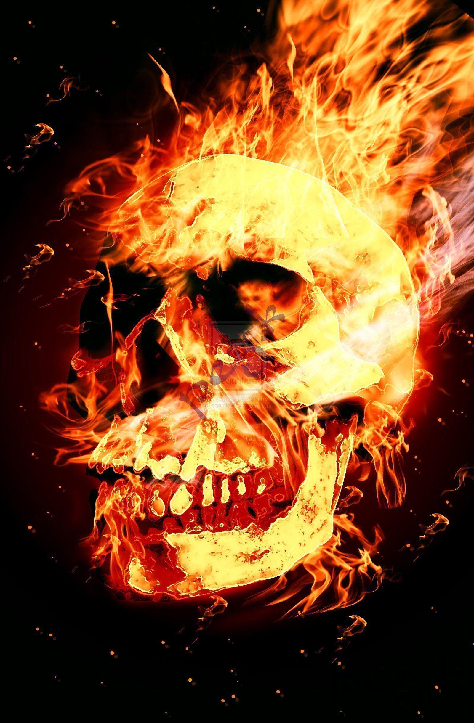 Flaming Skull Skull Wallpaper Skull Fire Skull