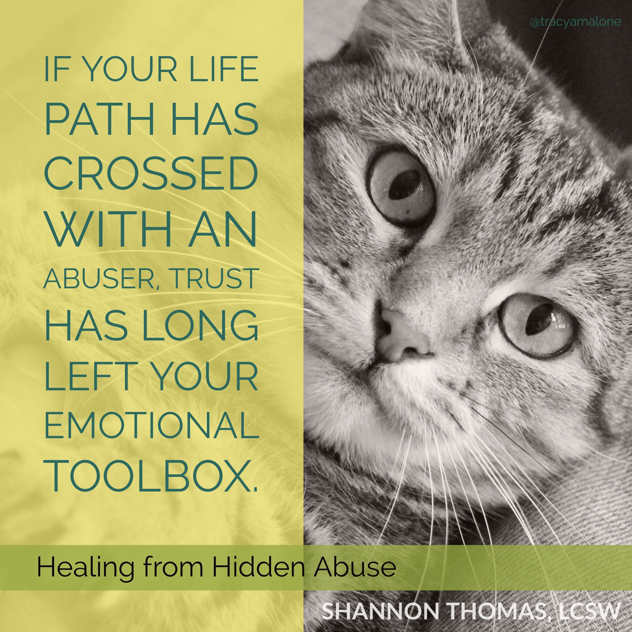 Quotes About Healing Narcissist Abuse Let's Rewrite Tomorrow #narcissist Quote #abuse .