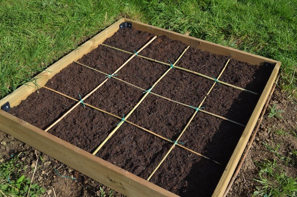 c4c3ee2b9a4457daf45a5db5c909dc4d - Square Foot Gardening In The Ground