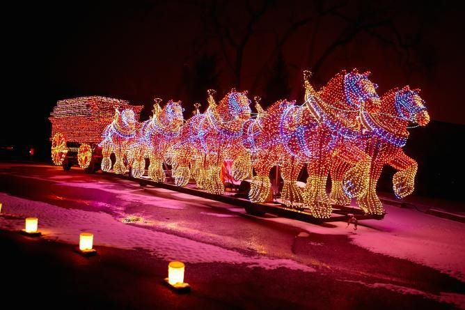 What A Great Christmas Light Set Up Equippedequine Com Horse Horses Equine Equestrian Equippedequi Festival Lights Christmas Lights Equestrian Holidays