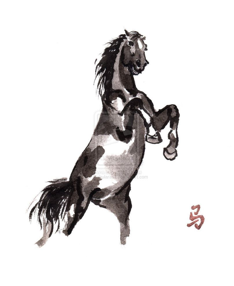 Rearing horse - by Stabu La Rasa, Netherlands, on deviantART