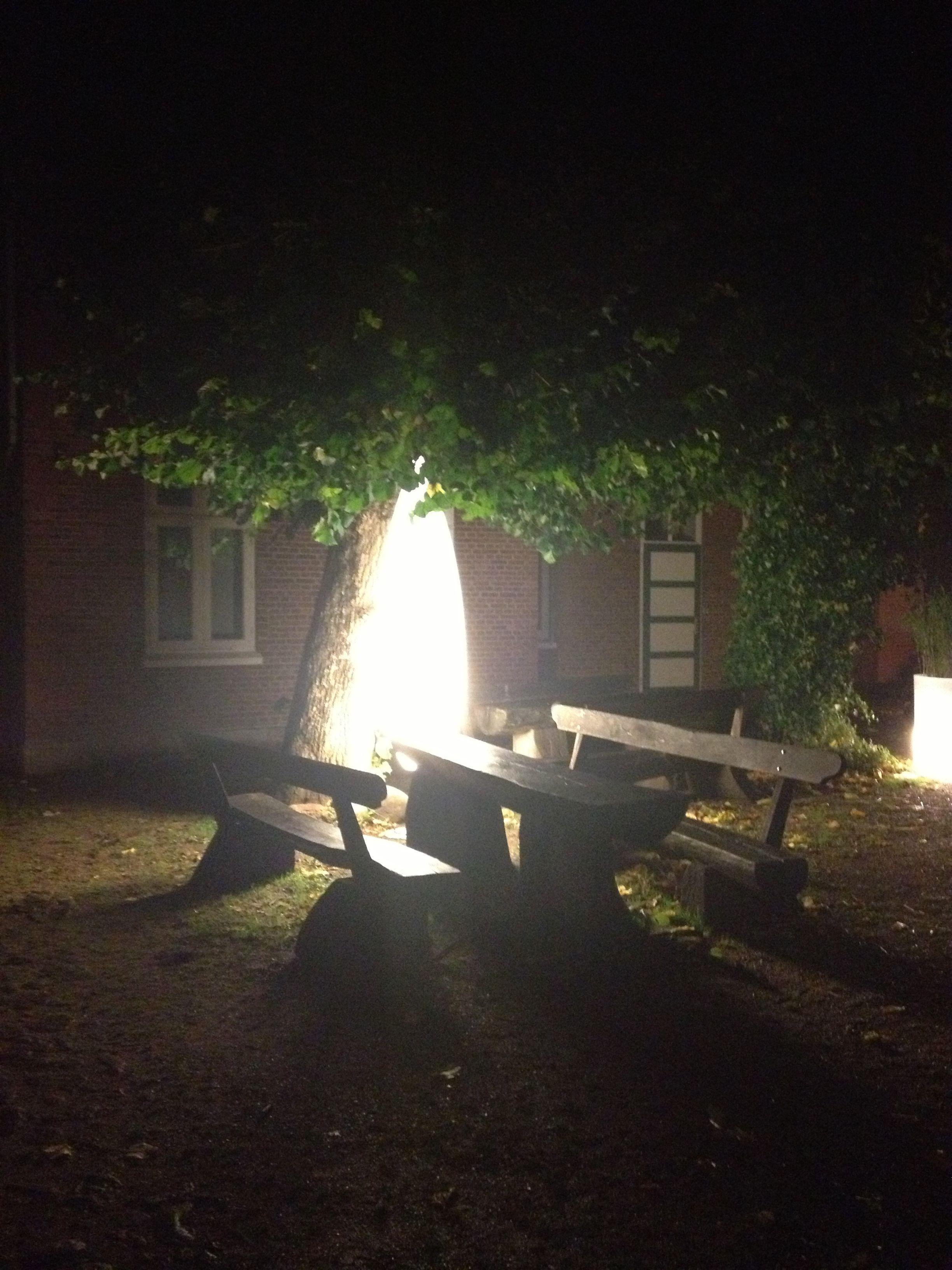 Leuchtobjekte Als Besondere Dekoration Für Terrasse, Garten Oder Balkon.