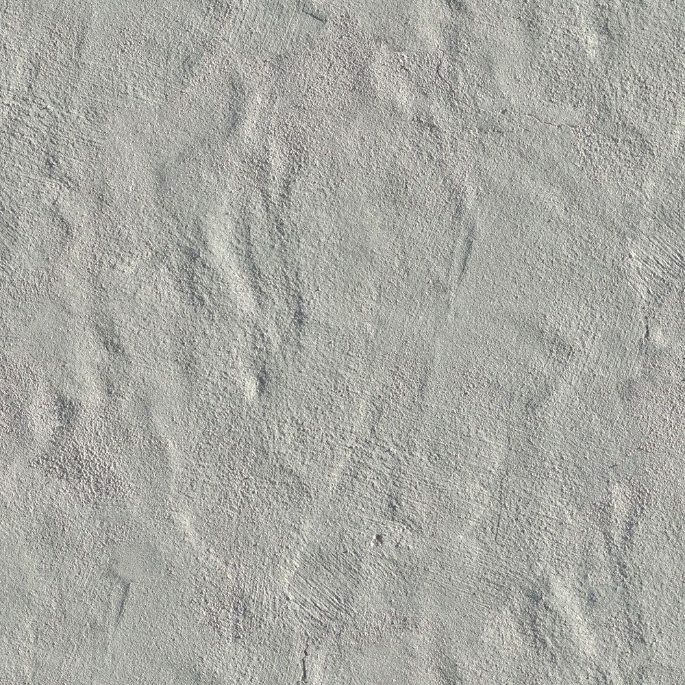 Interior wall texture seamless concrete textures   d design interior  pinterest