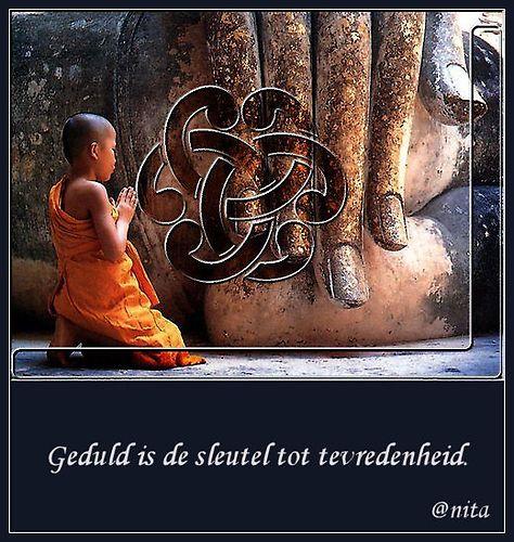 Citaten En Gezegden Over Politiek : Spreuken en wijze gezegden op boeddah