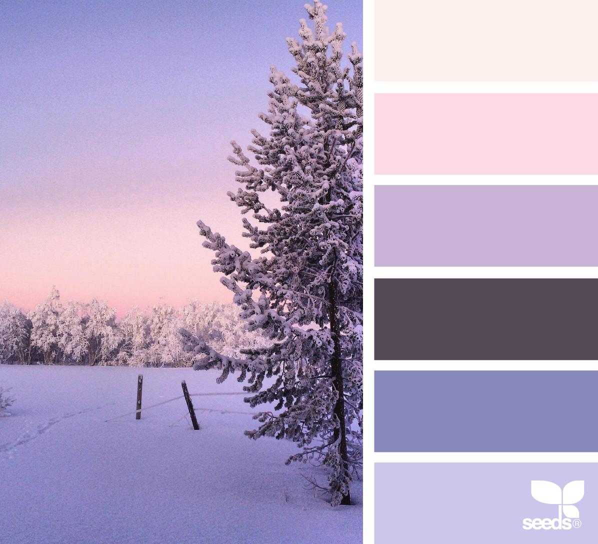 { winter wishes } image via: @arctic_stories