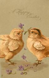 A HAPPY EASTER  two chicks each pulling at the same violet