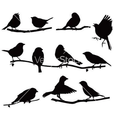 Silhouettes Bird On A Branch Vector 1151838 By Urchenkojulia On Vectorstock Bird Silhouette Flying Bird Silhouette Bird On Branch