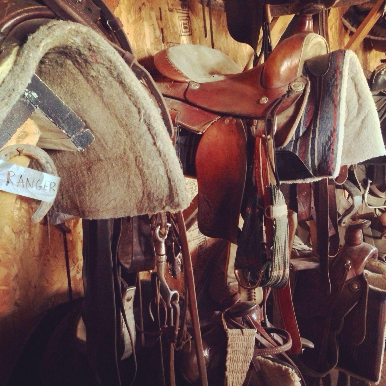 Rangers saddle.