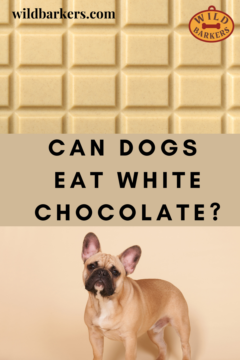 Can Dogs Eat White Chocolate? in 2020