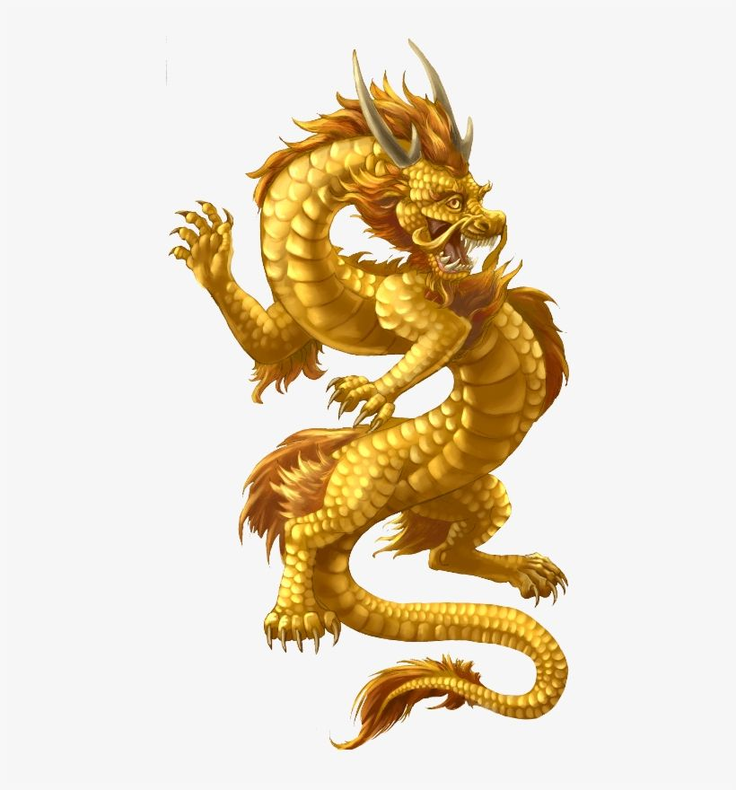 Chinese gold dragons side effects of steroid medication