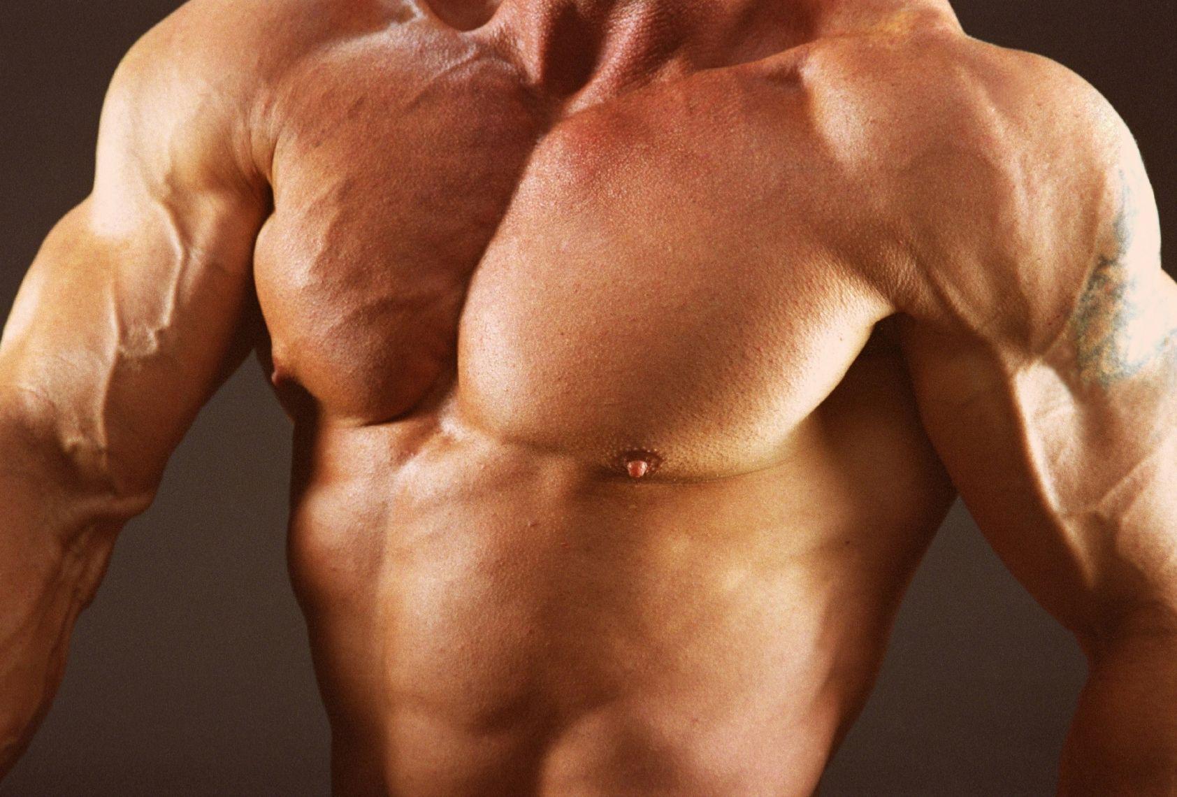 Die Brust: Anatomie, Training und Verletzungsverhütung