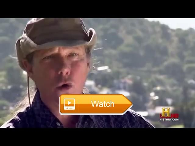Nature Documentary Nat Geo Wild Discovery Channel Animals HD