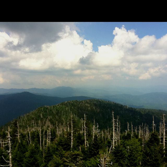 The View From Clingman's Dome In The Smokies