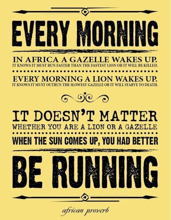 every morning the gazelle and the lion quotes