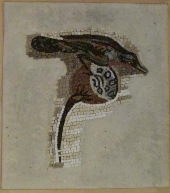 Copy of Roman mosaic from the House of the Faun, Pompeii. Naples National Archaeological Museum.  mosaic from  Eftychia Finou