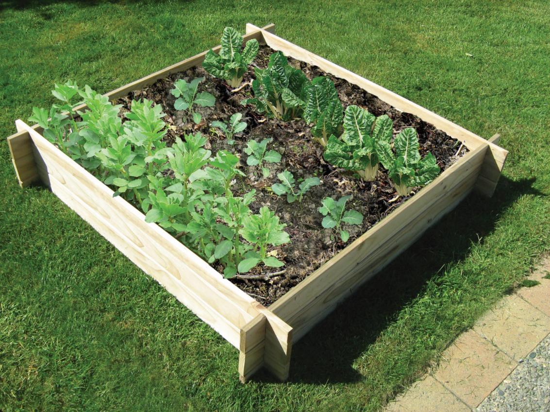 Notched Kitset Gardens Easy garden, Raised garden, Garden