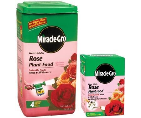 Miracle Gro Rose Food Water Soluble Plant That Is Specially Formulated To Grow Beautiful Roses Ideal For Ever Blooming And Repeat