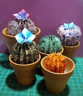 Cactus de papel, no se riega, no necesita sol directo :D