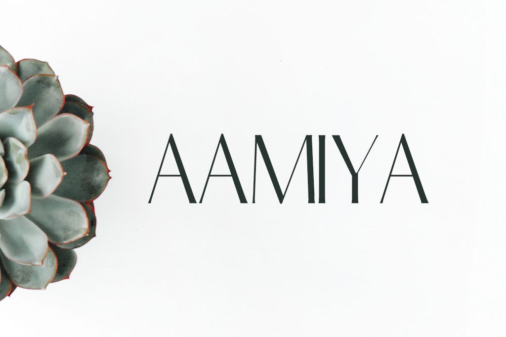 Download Free Aamiya Serif 2 Font Family Pack is a modern, simple ...
