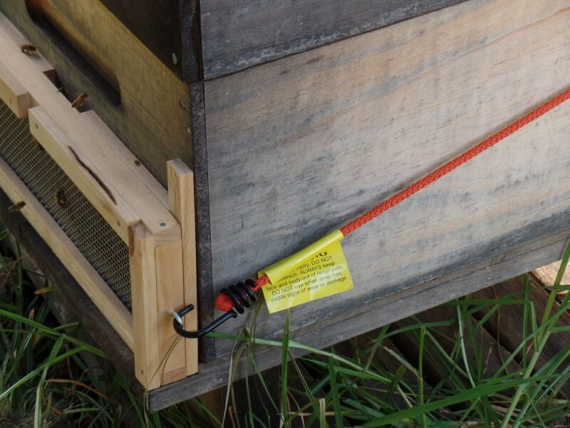 Robbing Screen How To Stop Wasps And Bees Robbing Your Bee Hives Bee Bee Hive Wasp