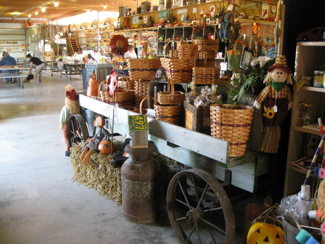 johnson's giant pumpkin farm store ~ saginaw, michigan | world palm