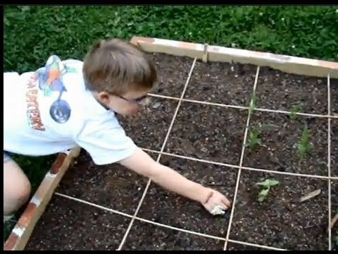 Thinning Seedlings In A Square Foot Garden #square Foot Garden
