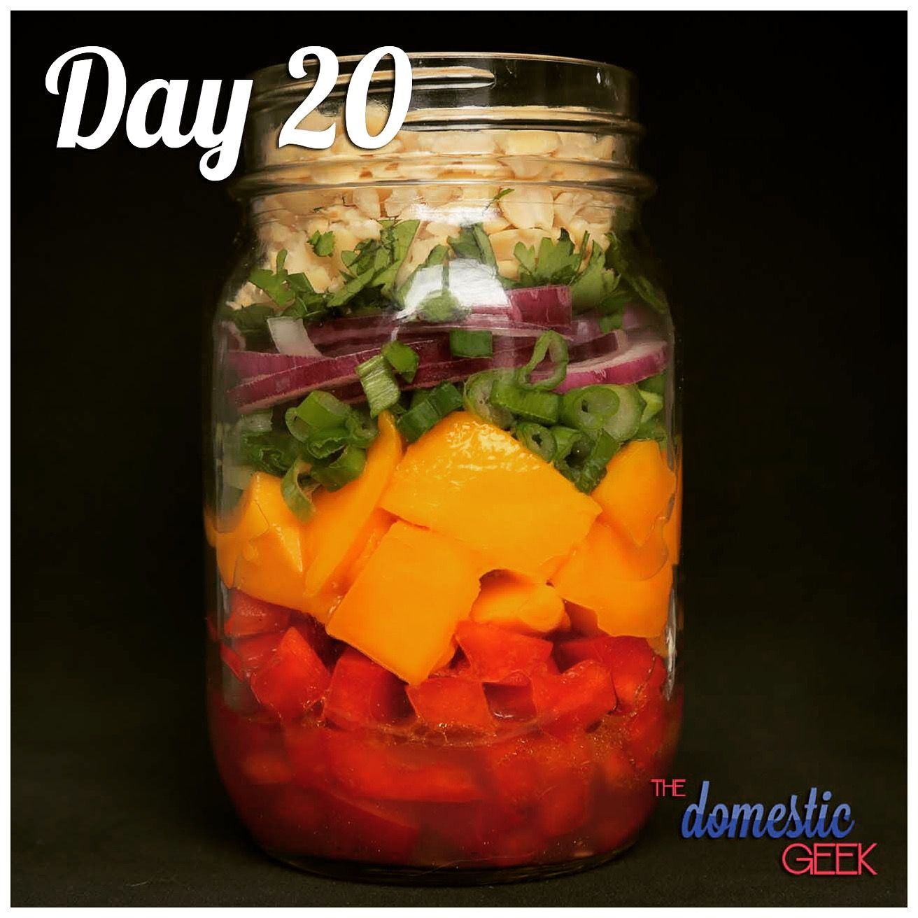 Day 20 - Thai Mango Salad 2 tbsp honey lime dressing (bit.ly/12Dressings)  ½ cup red bell pepper, diced 1 small mango, diced ¼ small red onion 1 green onion ¼ cup chopped peanuts 2 tbsp coriander, chopped