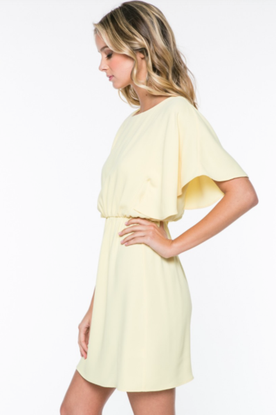 Pale yellow dress with sleeves.