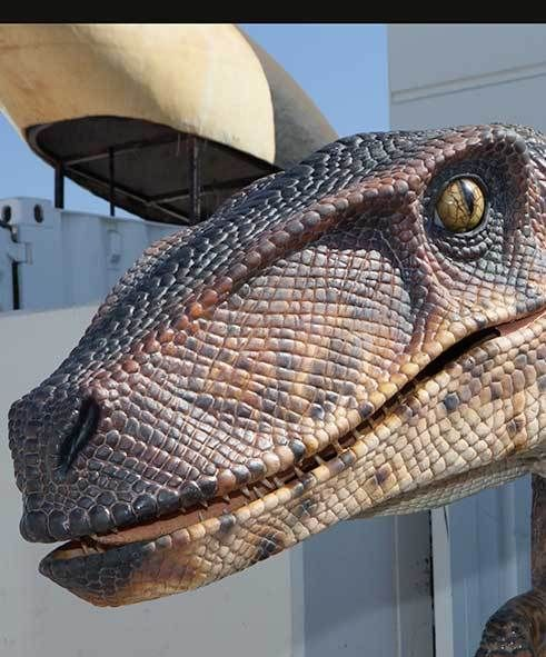 An amazingly realistic velociraptor suit built to order for you!