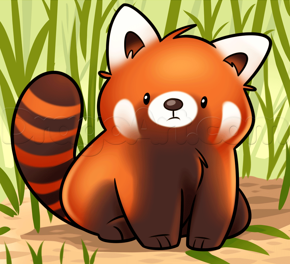 How To Draw A Red Panda Step By Step Forest Animals Animals Free Online Drawing Tutorial Added By Dawn May 10 2015 7 2 Panda Drawing Red Panda Drawings
