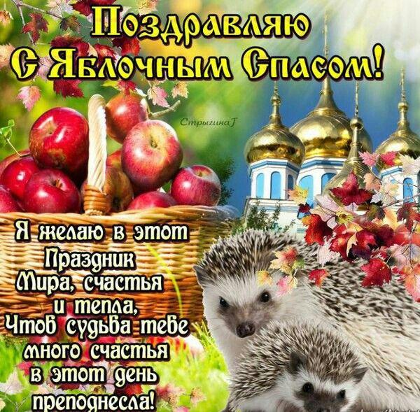 Открытку, картинки поздравления друзей с яблочным спасом