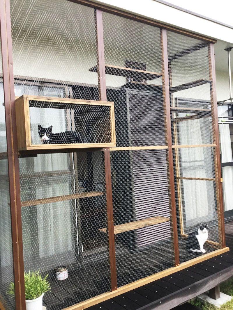 猫と幸せに暮らす住まいづくり 株式会社ネコアイ 猫の屋外ケージ 猫の家具 猫小屋