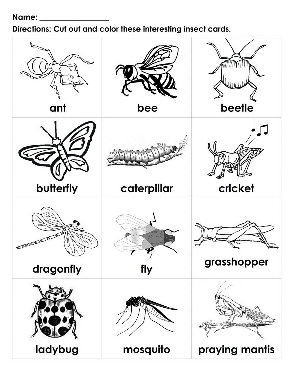 bugs for kids to color | ... Interesting Insects black-white cards ...