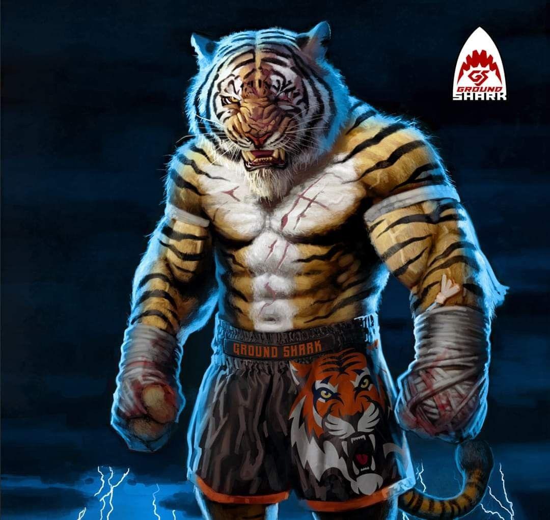 Тигр боксер картинки